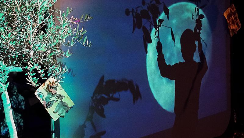 shadow of a boy againt a moon