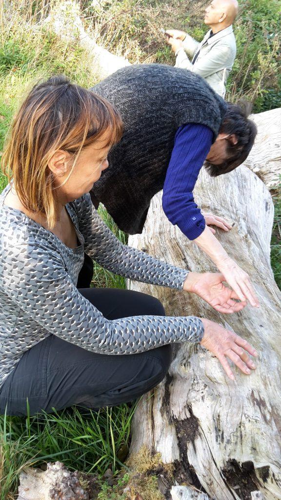 two people feeling a tree trunk